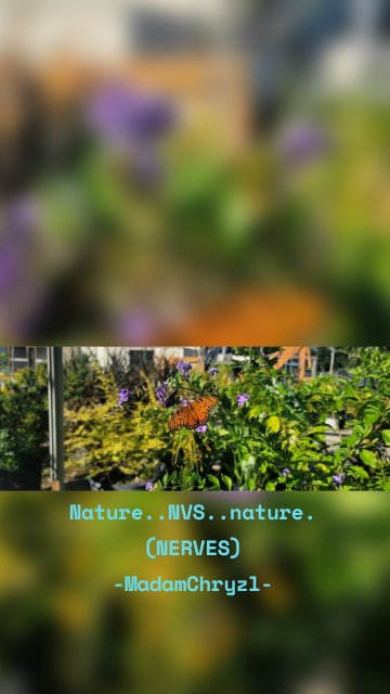 Nature..NVS..nature. (NERVES) -MadamChryzl-